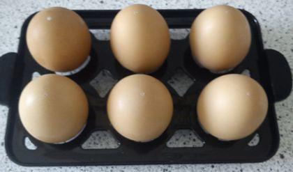 Die Eier auf in die Eiablage legen