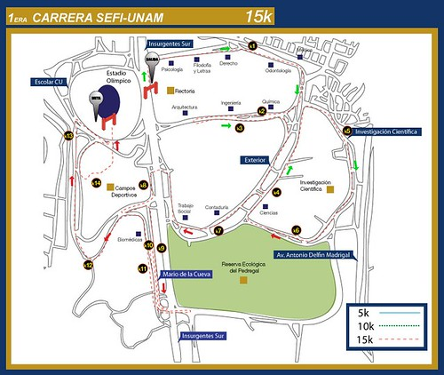 Ruta Carrera SEFI UNAM