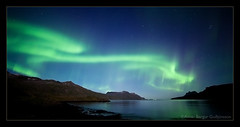 The green dragon - Aurora Borealis - Djupavik - Iceland (Arnar Bergur) Tags: ocean sea sky mountain green water canon stars landscape lights iceland dragon northwest aurora 5d 28 shape northern arnar borealis westfjords 14mm strandir rokinon djupavik vestfjords arneshreppur