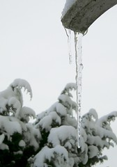 Erster Schnee im November