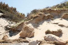 Glacial Erratics and Coastal Bluff (sandy richard) Tags: usa newyork unitedstates geology wildwood calverton wildwoodstatepark newyorkstateparks sandyrichard longislandgeology sandrarichard