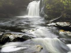 Falling (kenny barker) Tags: water landscape scotland rocks falls legacy shining lochlomond tistheseason riverfalloch fallsoffalloch magicpix legacyexcellence sbfmasterpiece panasnicg1