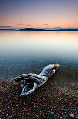 Driftwood Sunset (Bryan O'Toole) Tags: longexposure sunset ontario canada water landscape nikon scenic wideangle pebbles driftwood manfrotto northernontario waterscape algoma nd8 snowshoecamp wakomata lakewakomata wakomatalake nikond7000 nikkorafs1024mm