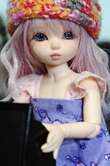 Molly has found a new home (BellaRhana) Tags: forsale fairyland pipi fa fs foradoption littlefee