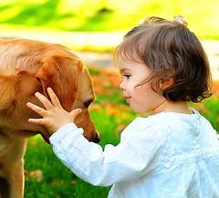 (Edgar Barany) Tags: dog baby girl animal kid child retriever barany edgarbarany jenniferannbarany