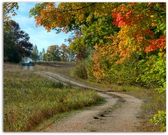 Early Fall - Pre Full Color (DMoutray - Denny Moutray Photography) Tags: fall nature landscape lane doorcounty 2011 coth coth5 nikond300s dmoutray