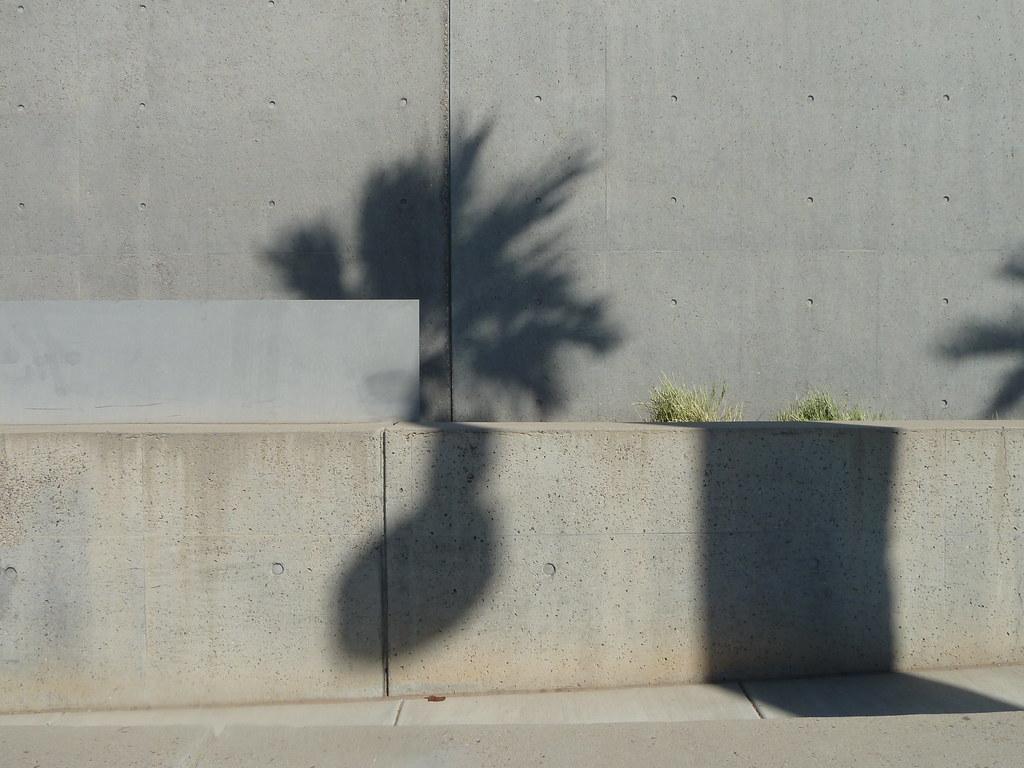 Phoenix, 2011
