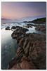 """A stockbroker urged me to buy a stock that would triple its value every year. I told him, """"At my age, I don't even buy green bananas.""""  ~Claude Pepper (danishpm) Tags: ocean pink sea seascape sunrise canon point rocks australia wideangle nsw hastings aussie aus 1020mm sigmalens eos450d hastingspoint 450d sorenmartensen tweedarea hitechgradfilters 09ndreversegrad"""