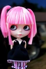 Pink & Black 155/365 BL♥VED