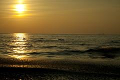 Evening. (devmasha) Tags: light sea orange sun nature birds canon evening balticsea