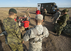 Multinational help (U.S. Army Europe Images) Tags: canada jump military poland parachute multinational usarmyeurope bumgardner 173rdairbornebrigadecombatteam dragon11