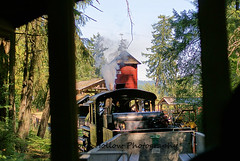 A Train Ride - BC Forest Discovery Centre, Duncan, BC, Canada (Toad Hollow Photography) Tags: old canada heritage history texture industry museum train rust bc logging trains historic vancouverisland preserved duncan artifacts steamtrain trainride greatphotographers bcforestdiscoverycentre