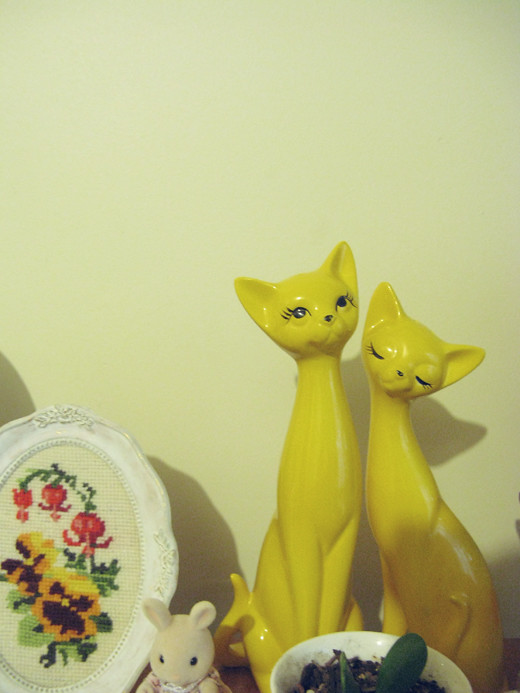 Yellow Cats