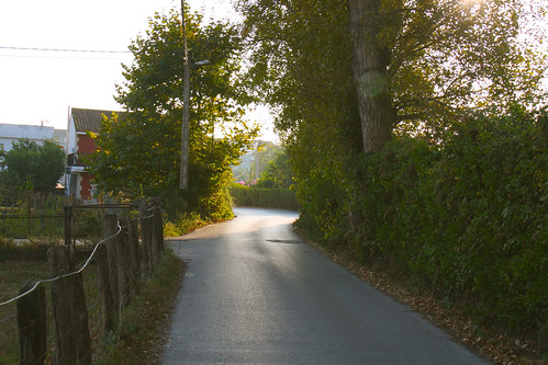Path into Colindres