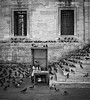 waiting for the pigeon feeders // sultanahmet, istanbul (pamela ross) Tags: street woman stairs pen turkey waiting feeding pigeons hijab olympus istanbul wait oldage sultanahmet feeds ep1 newmosque sulanahmet istanbullovers