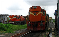 18477 Kalinga Utkal Express (Ankit Bharaj) Tags: railroad india green electric train canon photography is gm diesel flag indian engine style locomotive 100 express passenger railways exchange trainspotting puri enthusiasm ankit sx kalinga rourkela railfanning dbr utkal irfca bharaj vskp wdg3a jharsuguda wdm3d vishakhapattnam bndm boundamunda brundamal