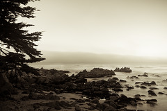 beyond cannery row (Eric C Bryan) Tags: fog monterey nikon day internet librarian internetlibrarian d700 ericbryan singhrayfilters leegndfilters ericbryanphotography wwwericbryannet ericcbryan ericbryannet