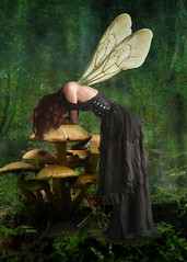 Even faeries have bad days... (lunamom58) Tags: texture mushroom forest photoshop wings digitalart fairy creativecommons faerie fairie ourtime