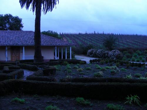 Chile2011-0077