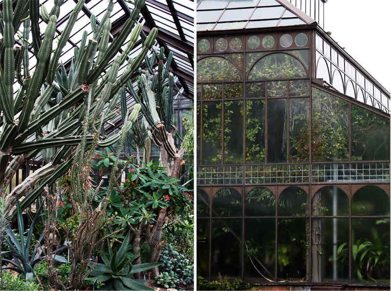 Botanic Gardens7