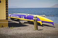 Hui Paiakalani -  Salt Lake City Hawaiian Outrigger Canoe Club (banzainetsurfer) Tags: usa lake water club america utah unitedstates paddle canoe saltlakecity saltlake hawaiian hui outrigger huipaiakalani