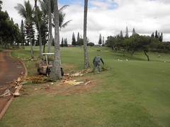 WAIKELE COUNTRY CLUB 138