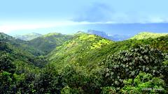 Mountainscape..3 (K. Shreesh) Tags: light india green landscape mountainscape naturesfinest supershot challengeyouwinner maval sanhyadri natureselegantshots flickrsportal varandhaghats canonpowershotsx230hs