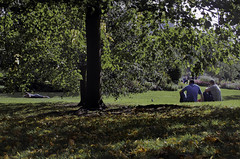 A Peep in the Park (Sven Loach) Tags: park autumn trees summer green bird london westminster grass leaves tom canon couple sitting afternoon sunny lying embrace mayfair spying peeping snogging g12 stjamess londonist