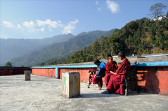 Friends (Saptak Ganguly) Tags: winter red india boys nikon asia afternoon terrace buddhist religion young culture sunny buddhism hills monastery monks tradition sikkim gangtok d90 gossiping youngmonks religiousclothing