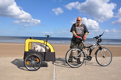 #3 Dog Mobility in Mablethorpe