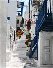 flowers on stairs (duqueros) Tags: white stairs island europa europe village hellas insel treppe greece griechenland weiss mykonos greekvillage kyklades kykladen   duqueiros