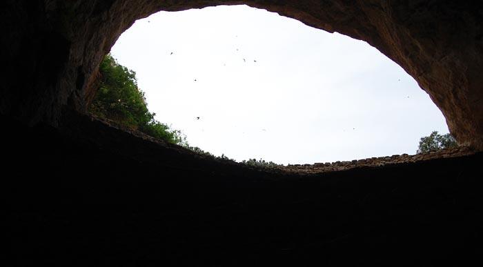 Carlsbad Caverns bats entrance inside