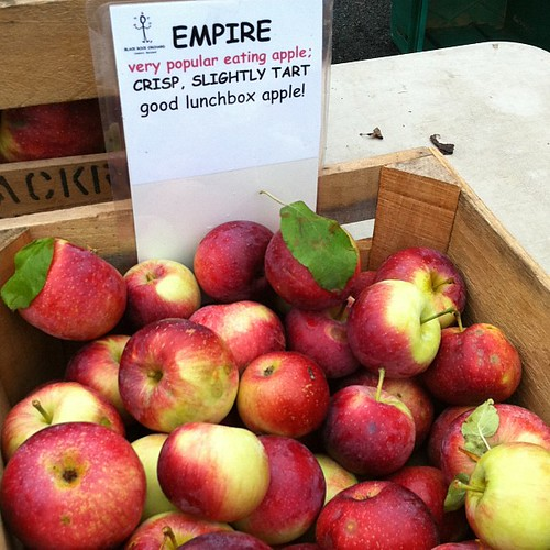 empire apples black rock orchard