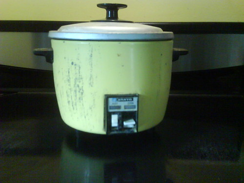 Alas, poor rice cooker by sandbar17