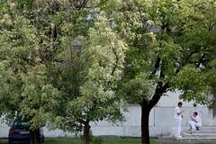pausa fumo (gufino (out for awhile)) Tags: auto italia milano scala lombardia giardino pausa niguarda infermieri