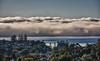 Tsunami Fog! (MarkMeredith) Tags: trees houses sea newzealand mist weather fog auckland northshore nz suburb tor fogbank haurakigulf yahoo:yourpictures=skyline