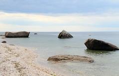 Glacial Erratics in Long Island Sound (sandy richard) Tags: usa newyork unitedstates geology wildwood calverton wildwoodstatepark newyorkstateparks sandyrichard longislandgeology sandrarichard