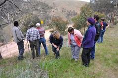 PGLC wirrabara field trip - a spring gully ae