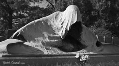 Azrael, the Angel of Death (P-h-o-e-n-i-x) Tags: blackandwhite monochrome cemetery nikon greenwood d80