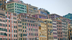 Camogli (erwin1964) Tags: travel houses windows red italy orange green yellow architecture reisen europa europe purple outdoor balcony balconies colourful clotheslines camogli erwin geographie housewall rowofhouses ligurien geografie foldingshutters zueger erwinzueger colorfulhousefronts colorfulfoldingshutters colofroul