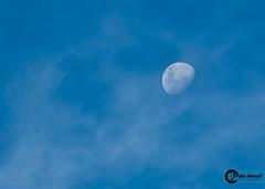 Ooh la moon... (Pablin79) Tags: trip blue summer sky cloud moon white brasil digital canon eos reflex holidays luna explore 5d vacations pipa balneariocamboriu markii 70200mm 2011 explored canonef70200mmf4lisusm canoneos5dmarkii 5dmkii pabloreinsch pabloreinschphotography pablin79