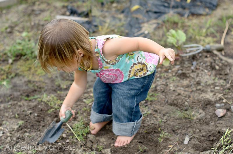 Playground and Gardening7