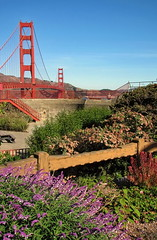 Golden Gate bridge (Mike G. K.) Tags: sanfrancisco california bridge flowers usa goldengatebridge goldengate 2007 mikegk:gettyimages=submitted