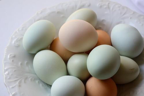 Nana's Eggs
