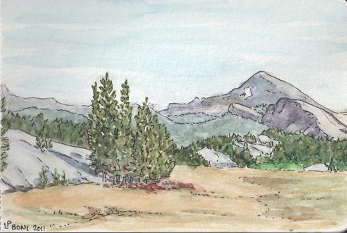 Tuolumne Meadows sketch