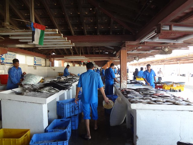 Mercado do Peixe de Sharjah Emirados Arabes Unidos