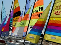 P1120239 (gregor_jeffrey) Tags: sun beach october brighton sails catamaran
