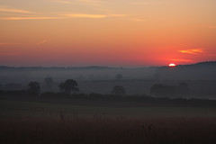 Sandridge Sunrise (Paul - Herts) Tags: morning misty sunrise dawn heaven hertfordshire herts britishcountryside earlyriser morningglow heartwood sandridge sigma70300mmapomacro canon40d