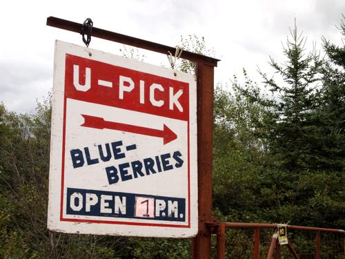 u-pick