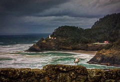 Heceta Head Lighthouse (Fresnatic) Tags: ocean storm photoshop lighthouses seagull pacificocean pacificnorthwest oregoncoast hdr florenceoregon hecetaheadlighthouse photomatix stormyseas